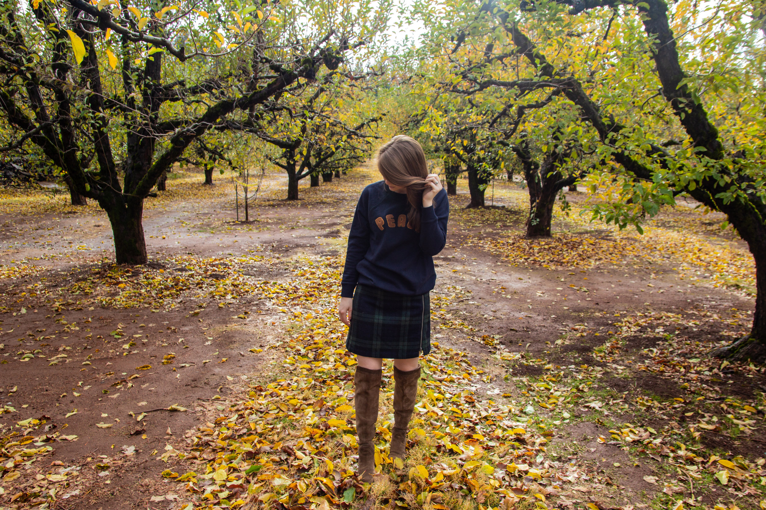 blackwatch plaid mini skirt, suede vince camuto over the knee boots, peace sweatshirt, american eagle sweatshirt, apple hill, california, placerville