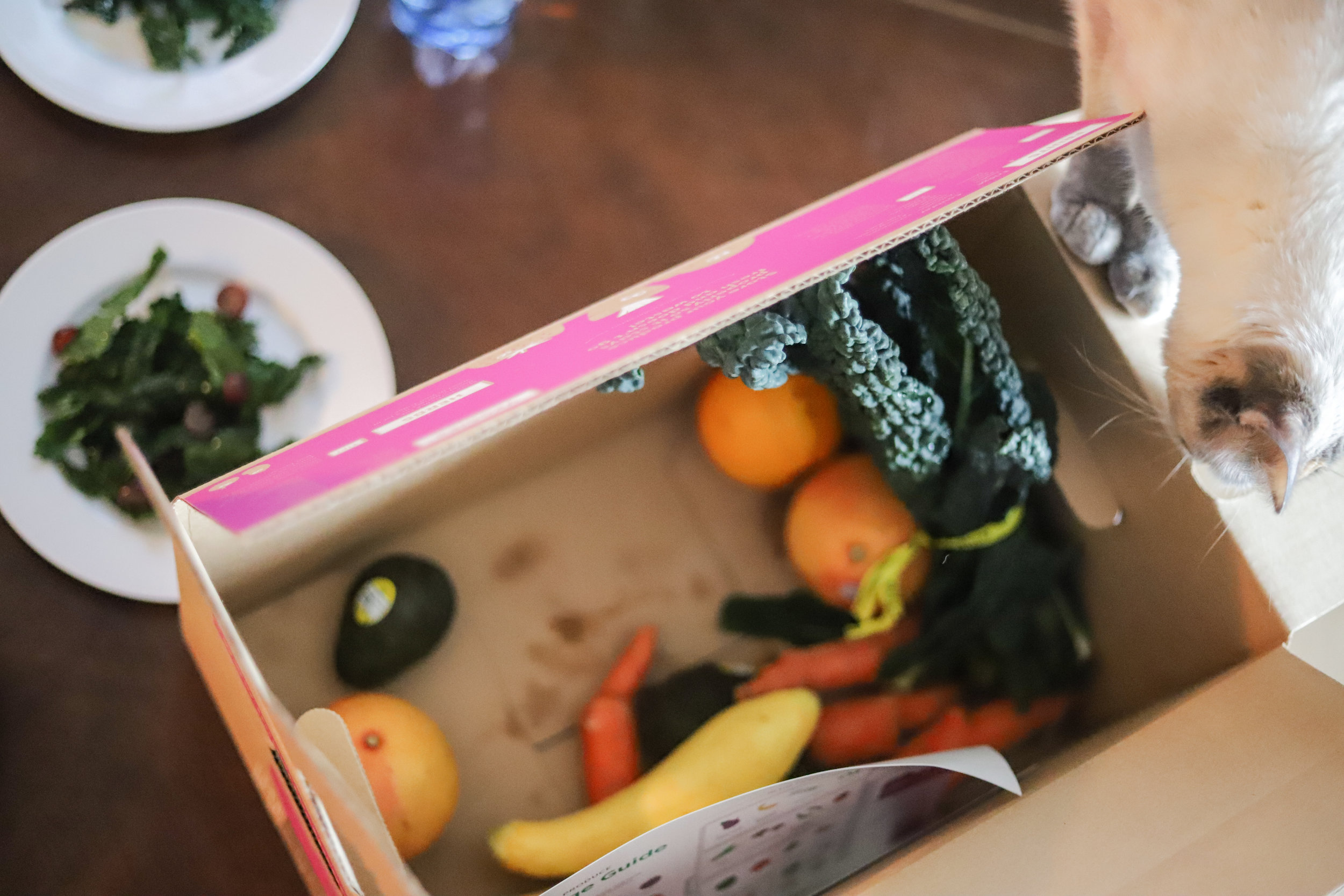 organic produce for less, imperfect produce, fruits and veggies delivered to your door,  vegetables, dallas, houston, austin, san antonio,  sacramento, la, san diego, la, san francisco