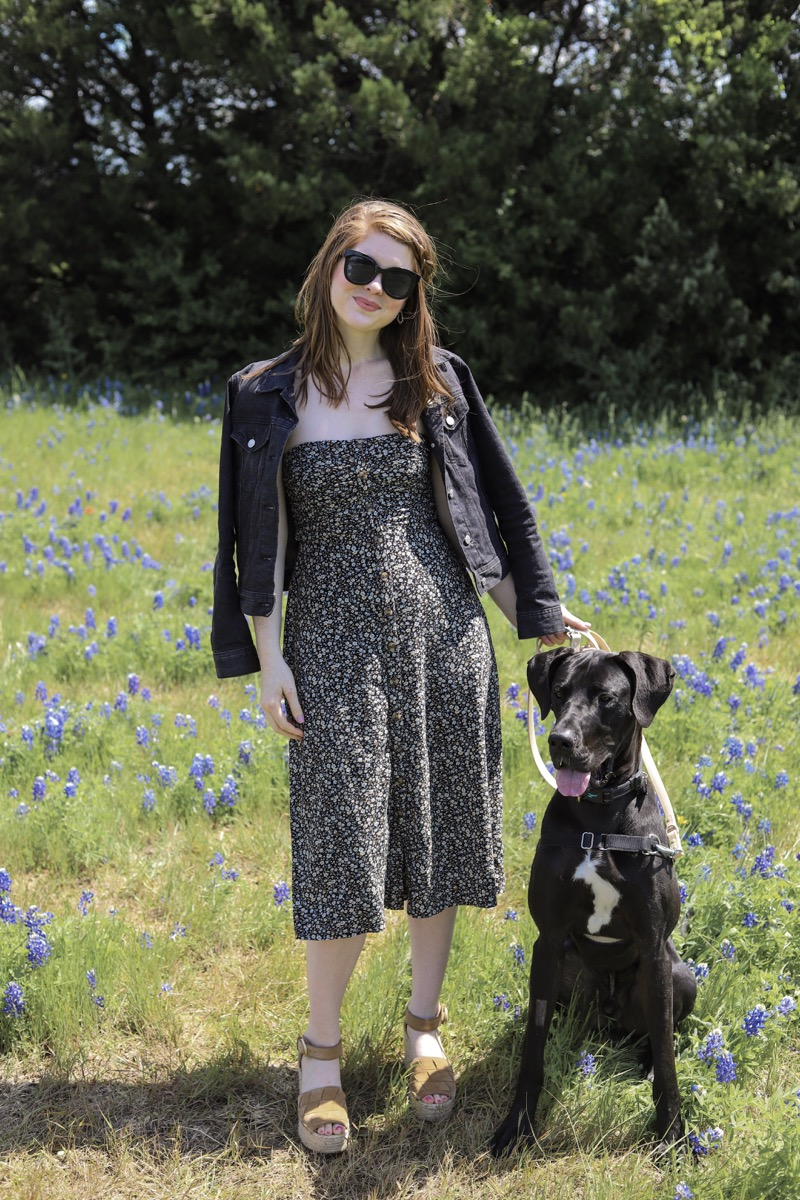 American Eagle Ruched Midi Dress | J. Crew Factory Black Denim Jacket | American Eagle Sunglasses | Marc Fisher Adalla Wedges | Ilia Lipstick: Rosette | Kendra Scott Paxton Earrings, spring, texas roadtrips, near dallas, dfw, bluebonnets, ennis, where to take bluebonnet pictures