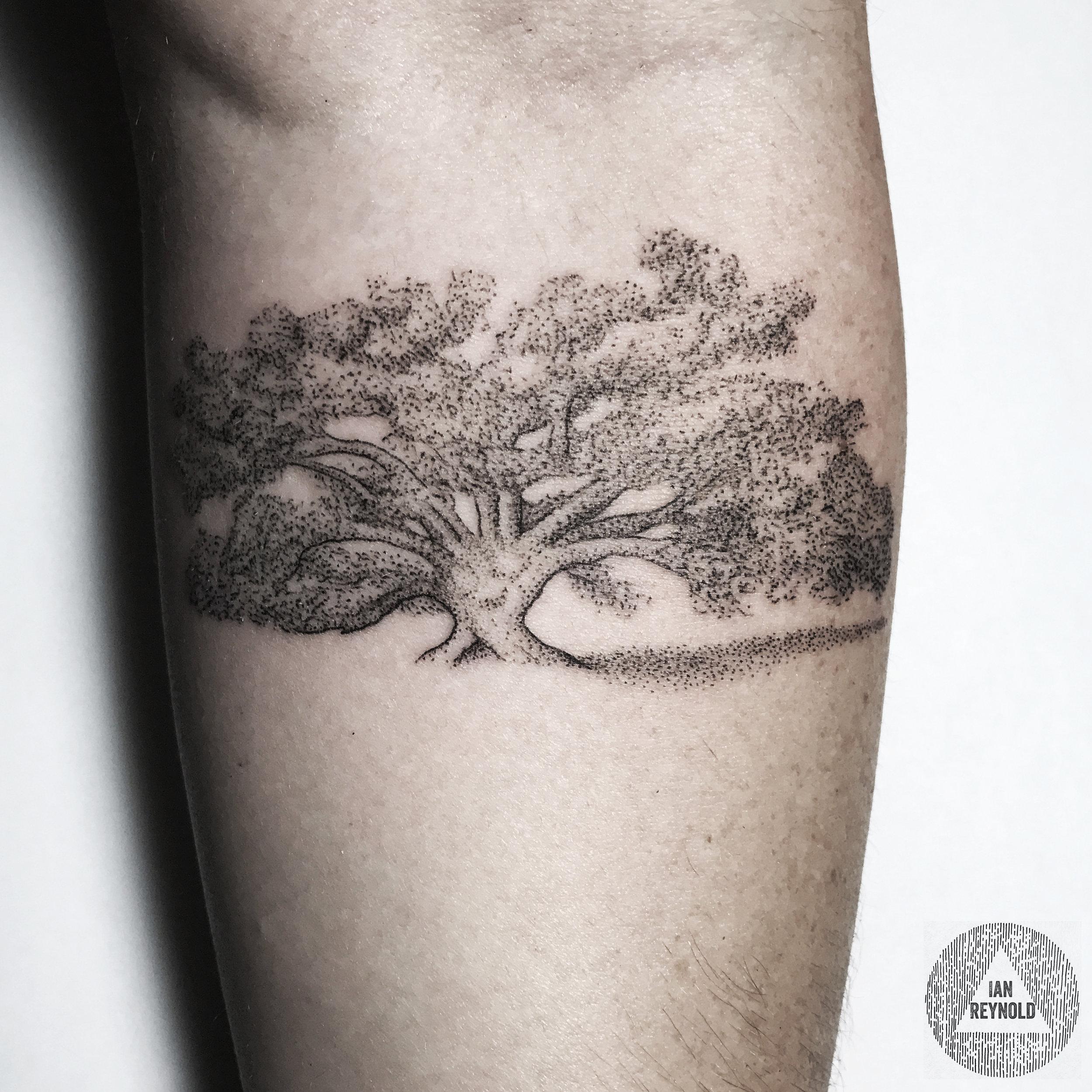 Southern Oak