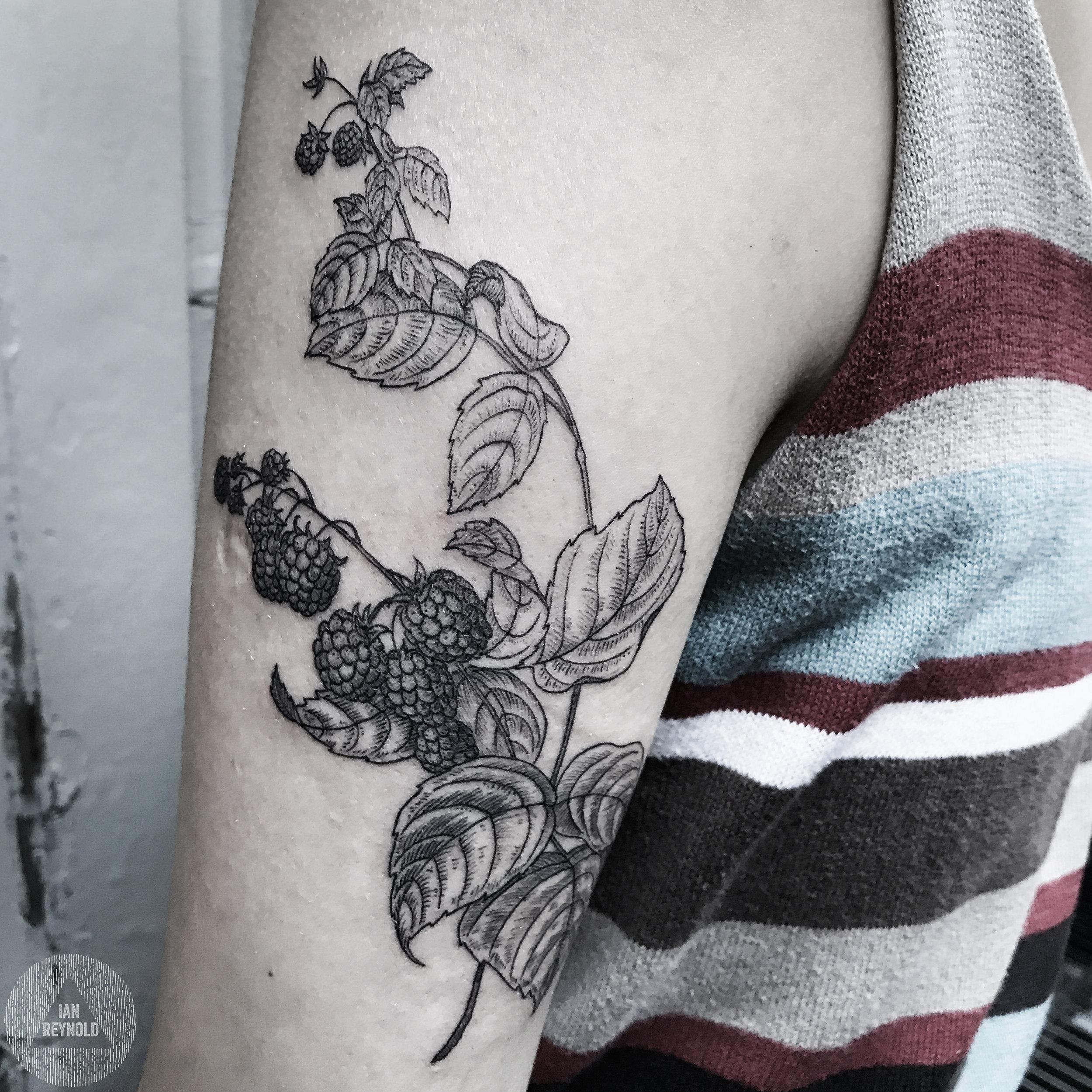 Blackberry branch etching