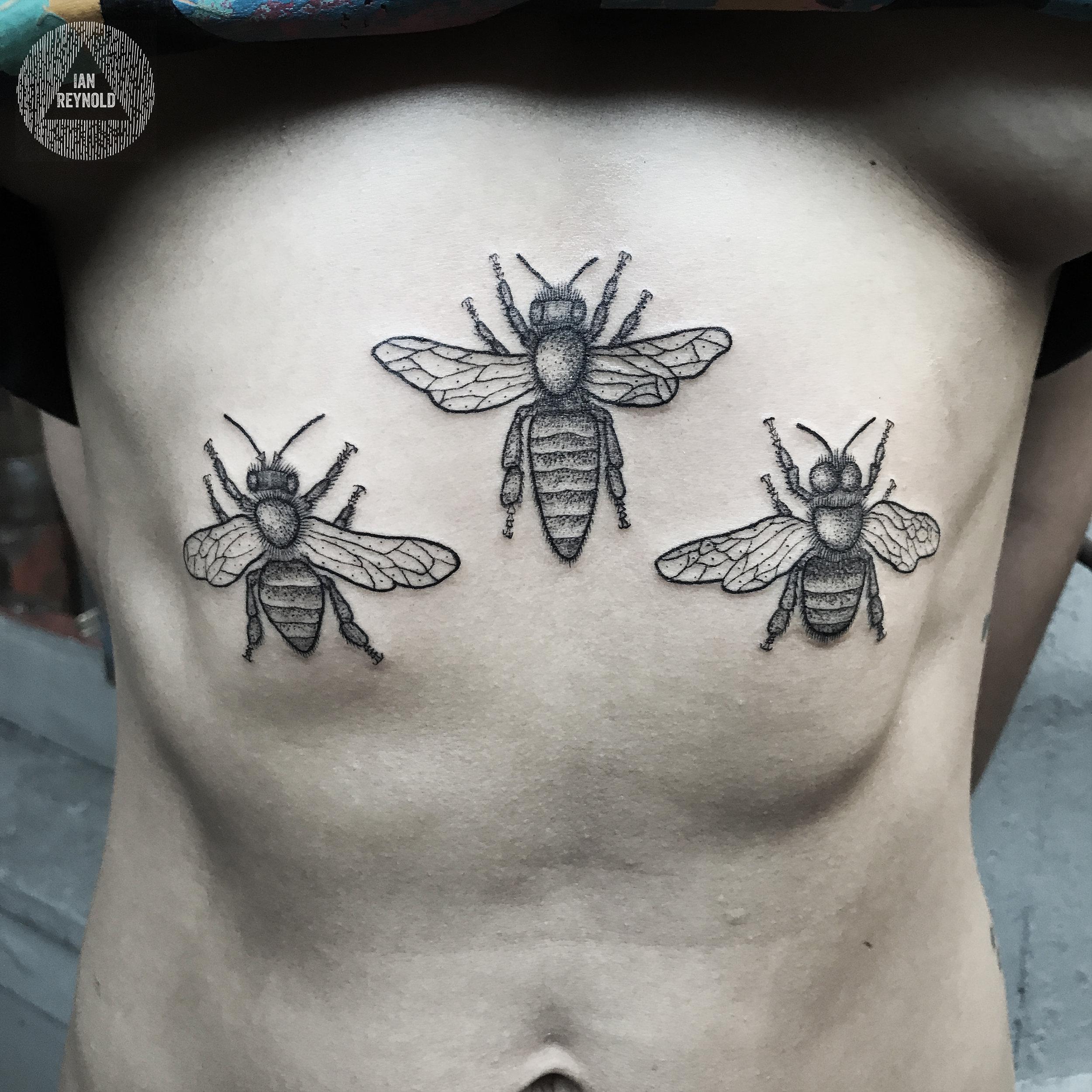 Worker Bee - Queen Bee - Drone Bee
