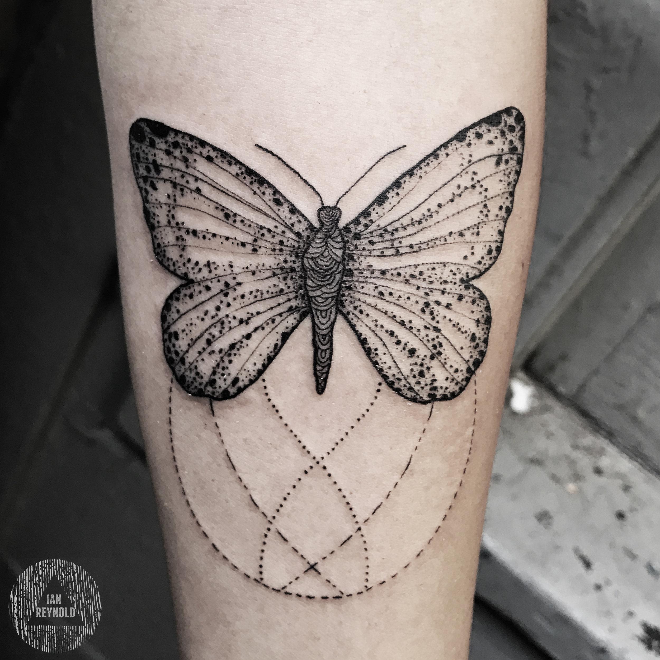 Blackened Monarch