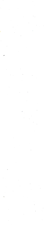 white-11 (2).jpg