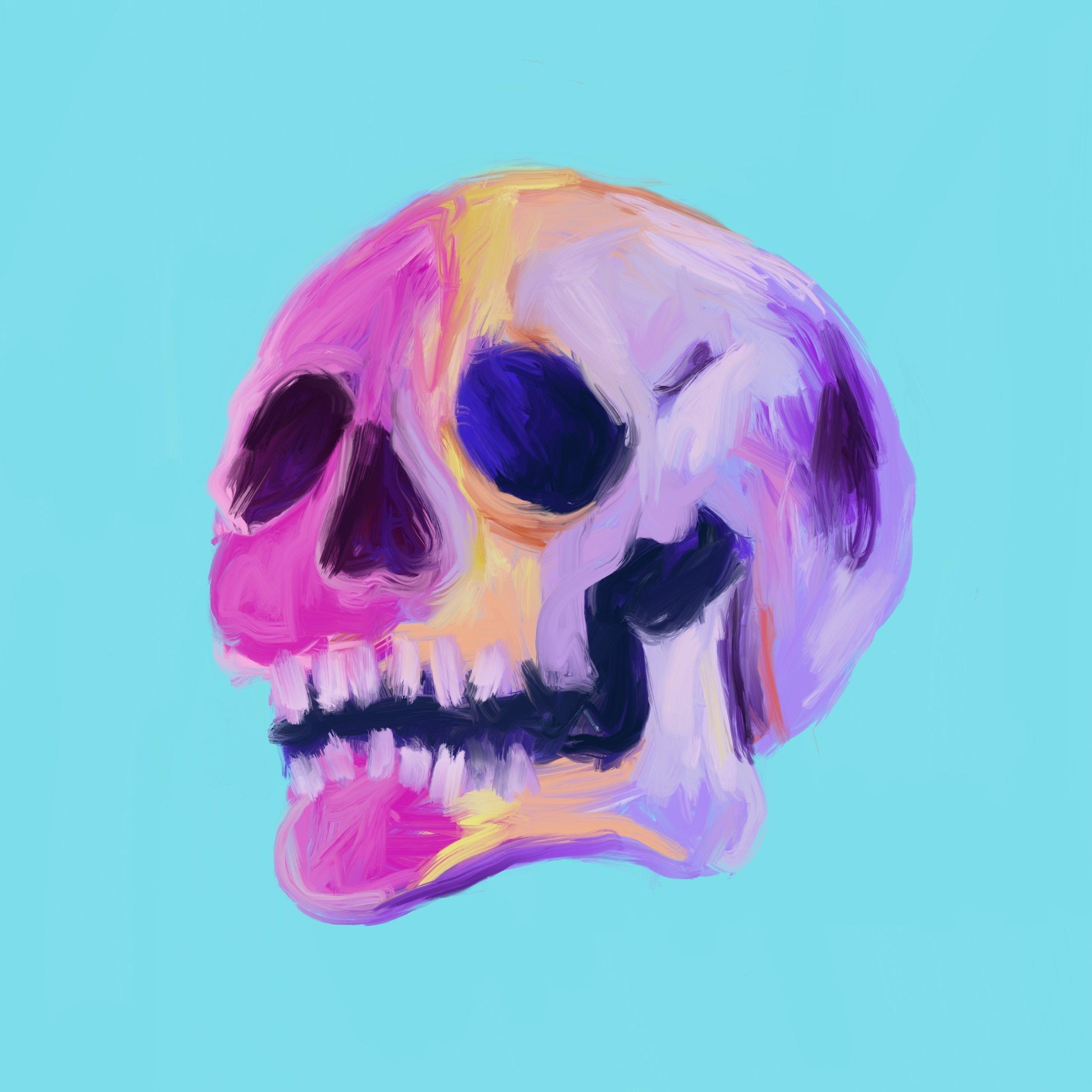 Digital Skulls