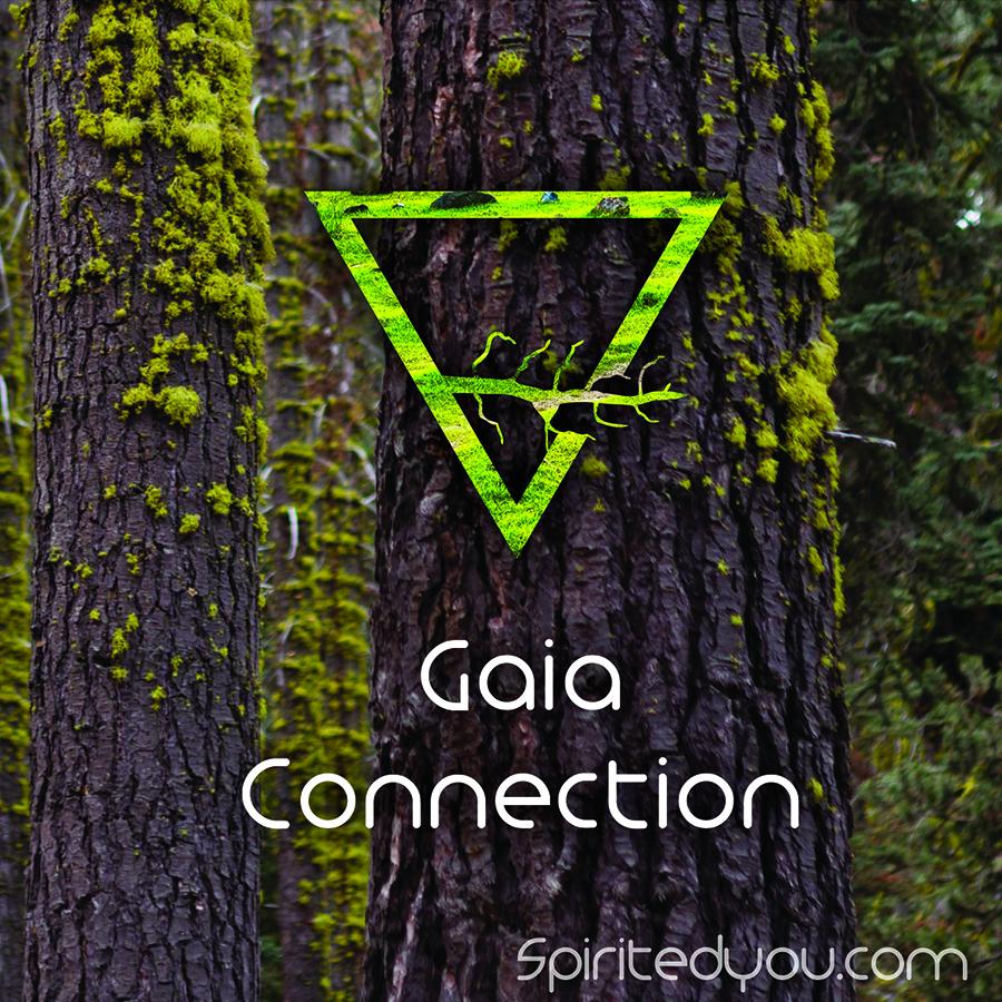 Connection_Kit_BlogImage-01.jpg