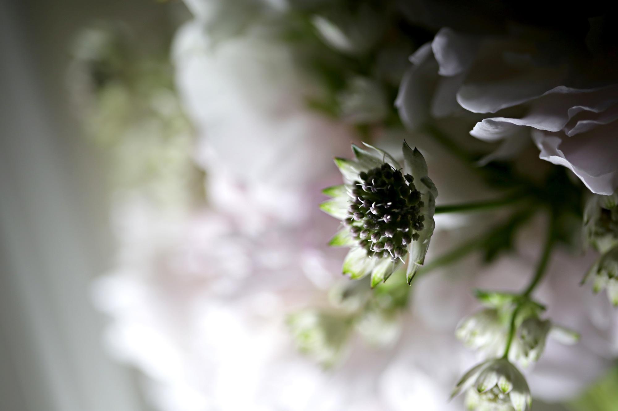 chanel_wedding26bouquets.jpg