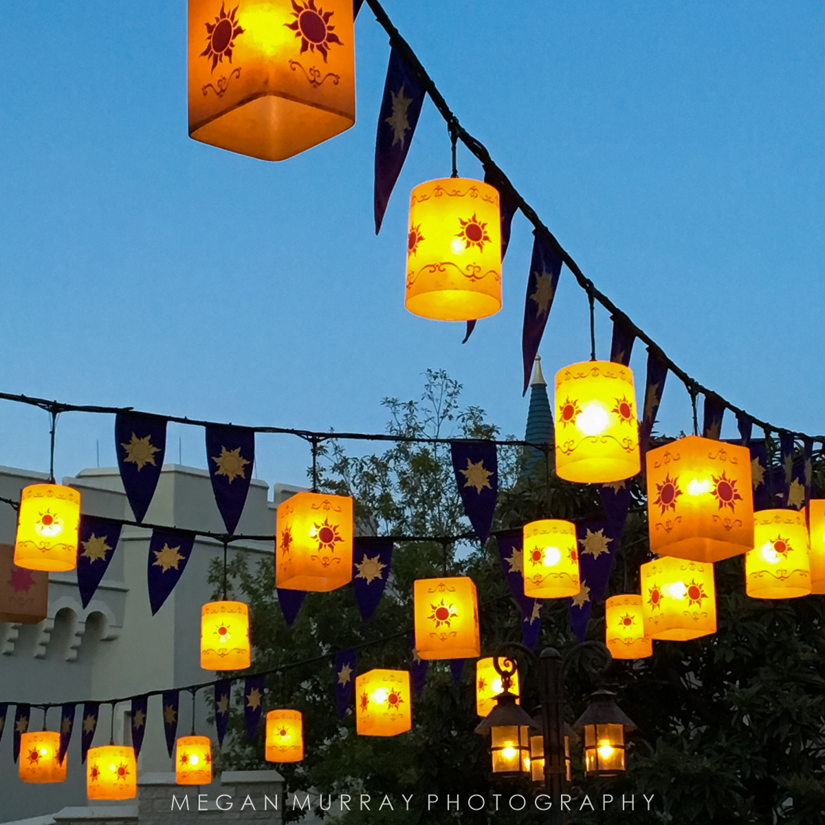 Rapunzel lanterns in Magic Kingdom