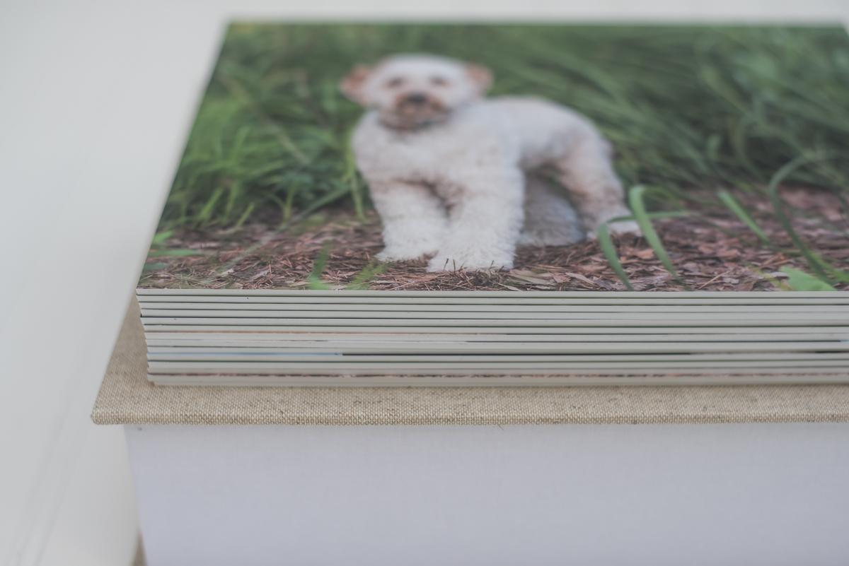 desk prints-2.jpg