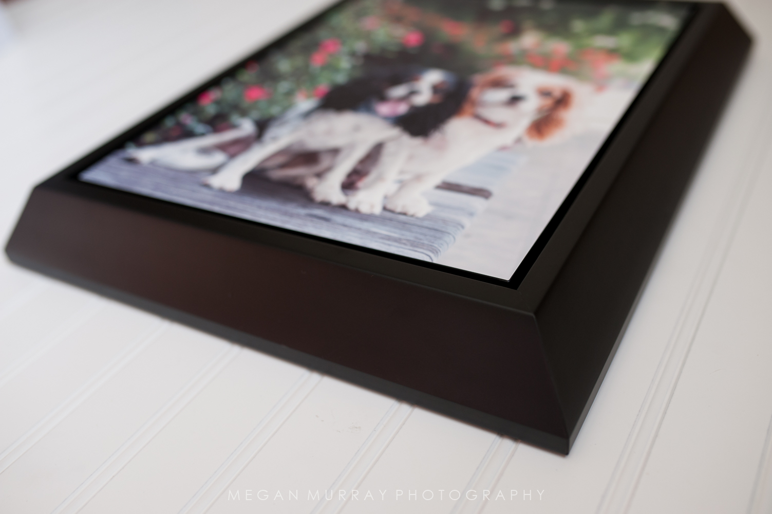 Pet Photo Albums and Wall Art-23.jpg