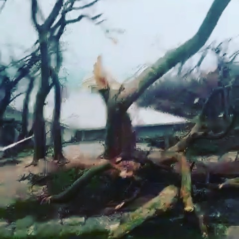 Some of 1st videos from my Bahamian Family at the @fireflysunsetresort ... if you know the property these videos are extremely tough to watch... these are 1st video we are getting... and I know they are only going to get worse... please donate to Hope4HopeTown Dot Com & we will try and get the supplies down as soon as we possibly can... thank you and much love to everyone out there and especially the Bahamian folks who are living in hell right now. #hope4hopetown #bahamas #dorian #donate #linkinbio