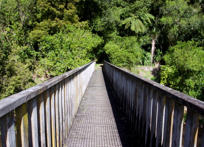 The wooden bridge that greets you at the start of the loop track.