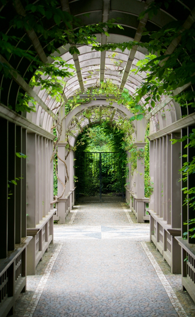 The tunnel of vines in the Italian Garden at the Hamilton Gardens.