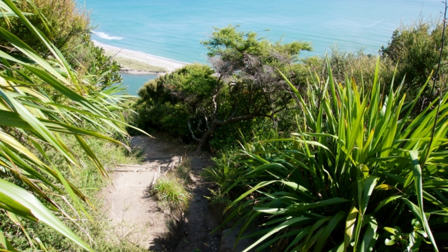 After one the steeper uphill sections, you come down the track opening up to the coastline.