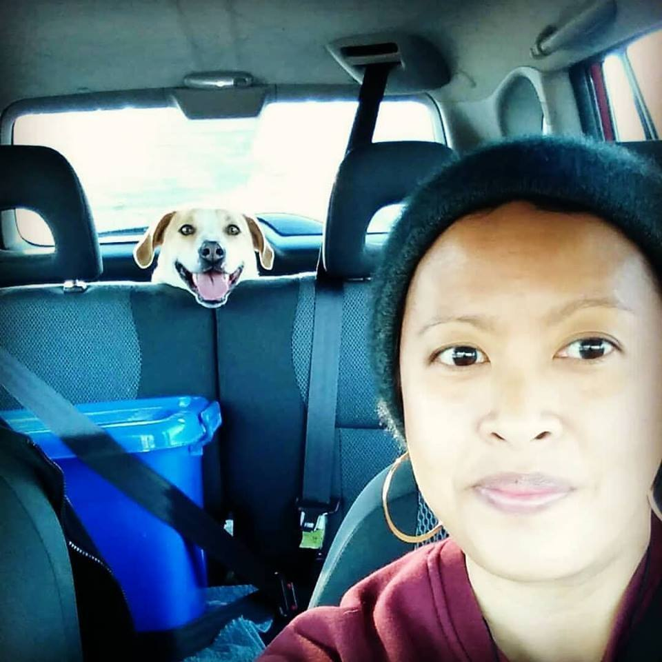 The last photo of JC and I together (30/06/2018) - somewhere along the road to Palmerston North. She's pretty good on road trips, usually because she knows a ride in the car has a high chance of us going to the beach.