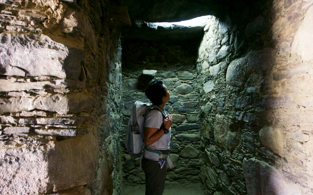 Near the entrance of the main rooms at Willkawain.
