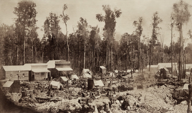 Earliest known photograph of Kumara. Taken in December 1876 by H. T. Gorrie. From the H. T. Gorrie Album in the Buttle Family Archives.