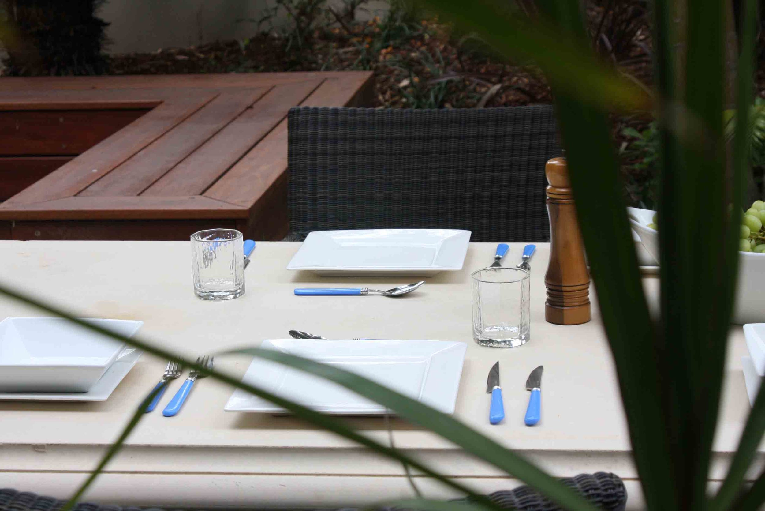 table setting from house side lo res.jpg