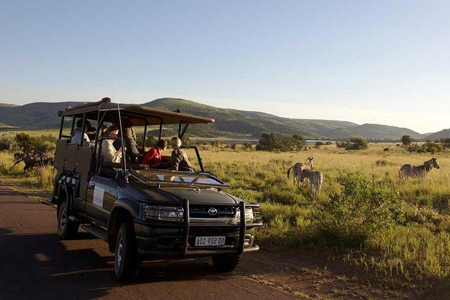 Conservation safari holidays Pilanesberg, South Africa