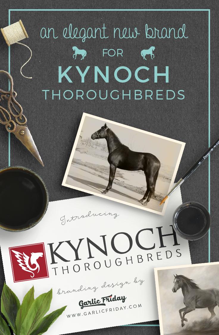Elegant & Classic Logo - New logo and brand identity for horse stud, Kynoch Throroughbreds by Garlic Friday Graphic Design - www.garlicfriday.com