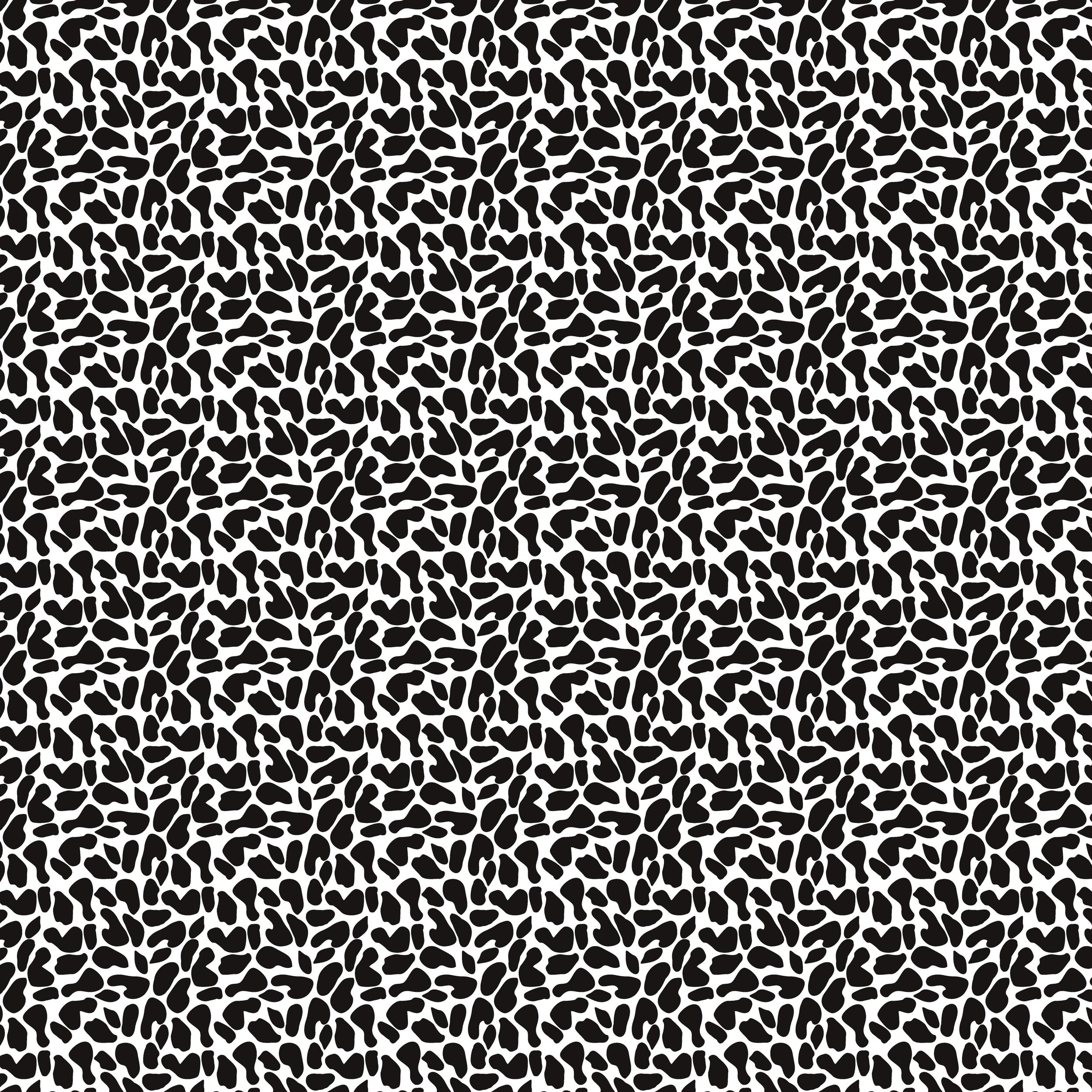 Leopard Patterns_Black & White_300 dpi.png