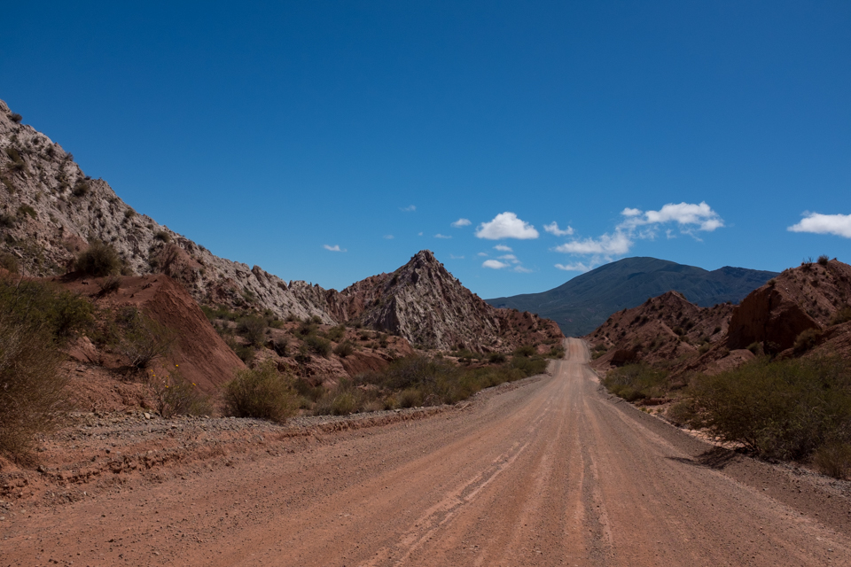 A day of driving through canyons and cactus fields