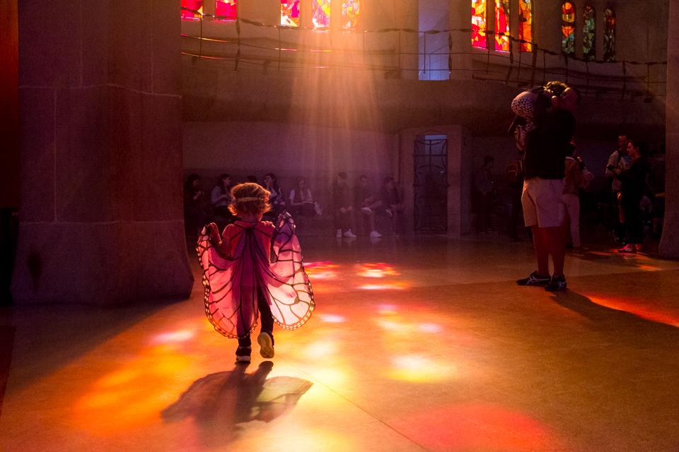 Butterfly in the light, Sagrada Familia