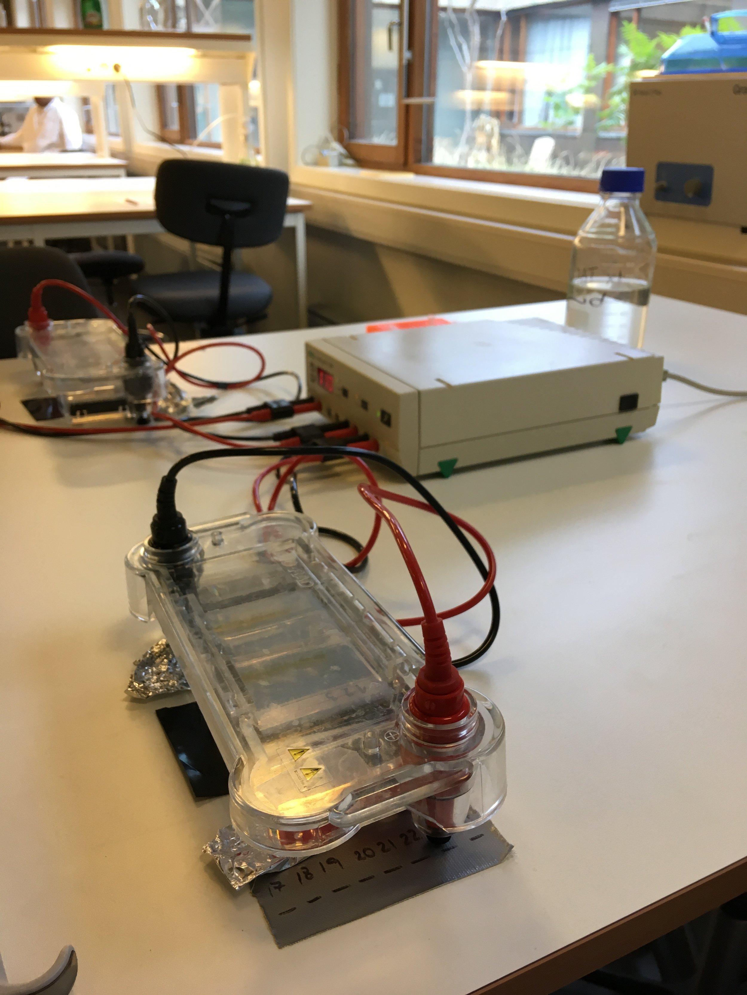 5. Gelelektrophoresekammer.jpg
