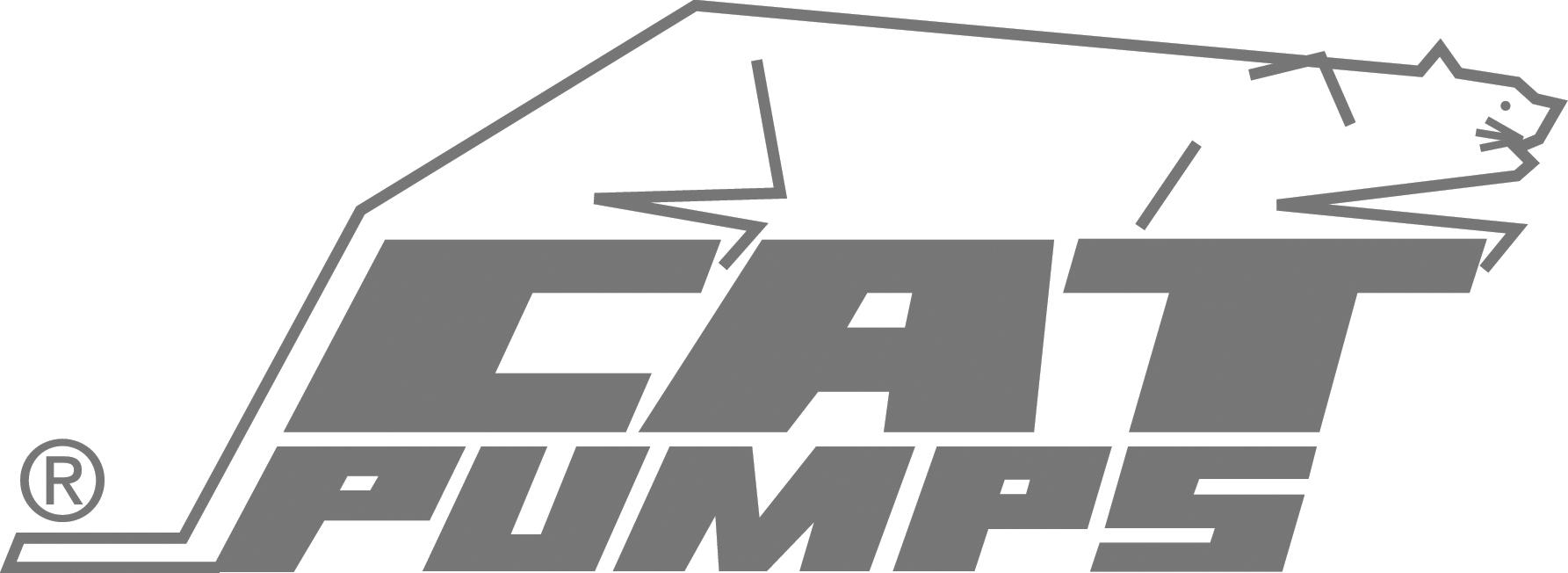 Cat Pumps bw.jpg