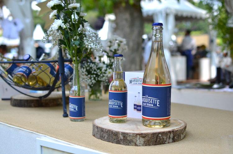 twinky lizzy blog aix en provence - salon cote sud 2017 21.jpg