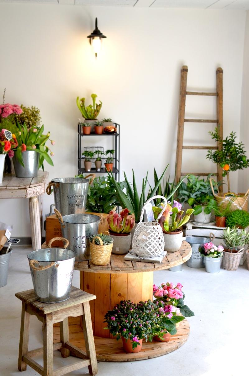twinky lizzy blog aix en provence - boutique atelier la fabrique detoiles filantes 02.jpg