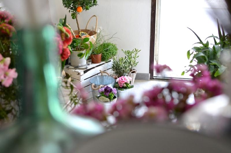 twinky lizzy blog aix en provence - boutique atelier la fabrique detoiles filantes 09.jpg