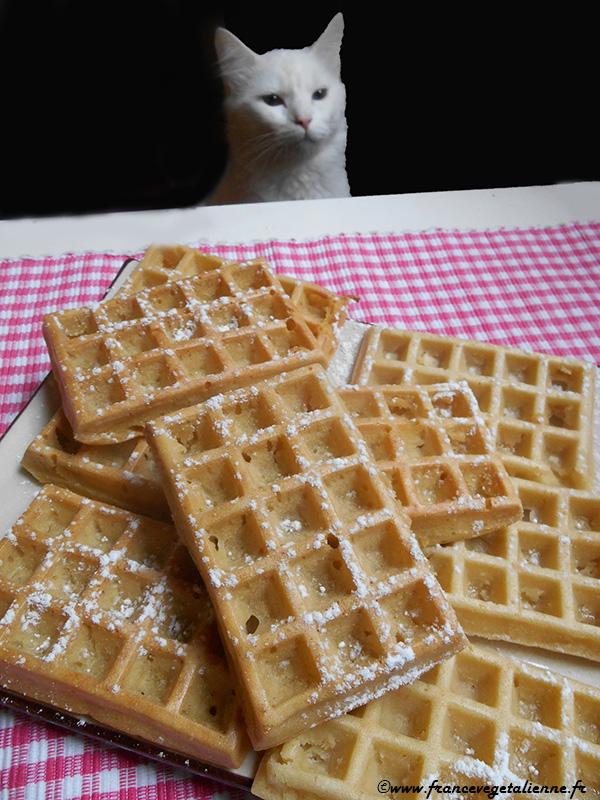 Les humains mangent des trucs bizarres, semble penser Lilo...
