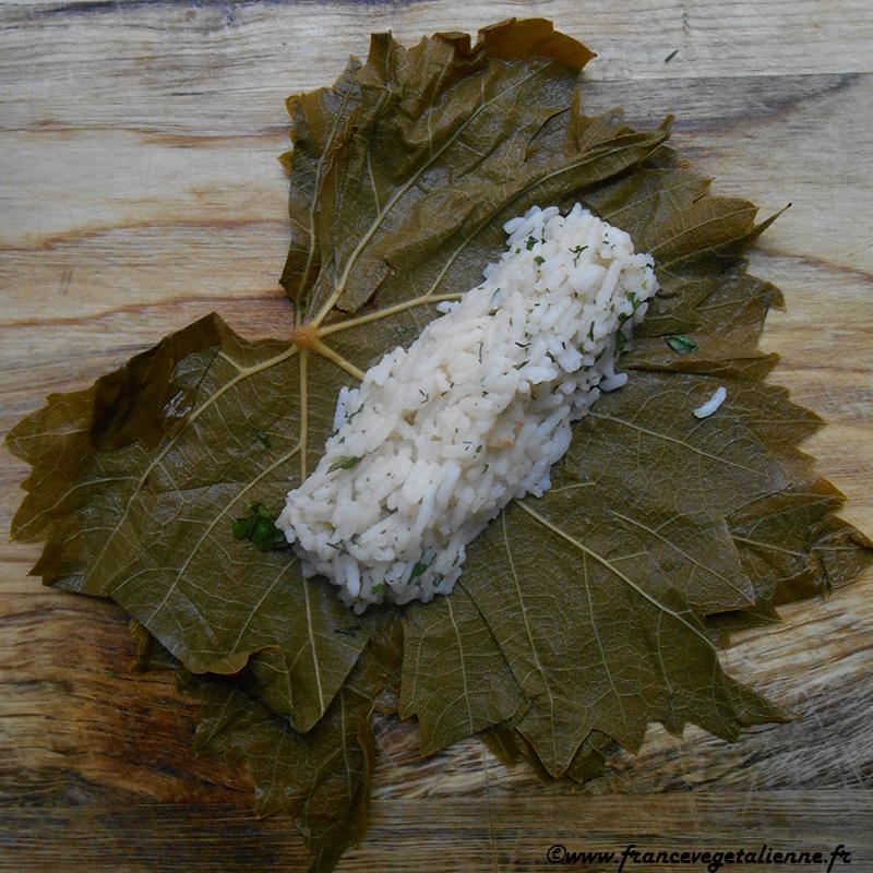 Dolmas-feuilles-de-vigne-farcies-préparation-3.jpg