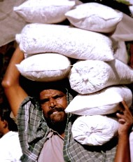 man carrying bags on shoulder, india