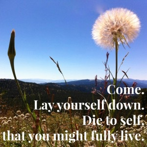 Dying-to-Self-300x300.jpg