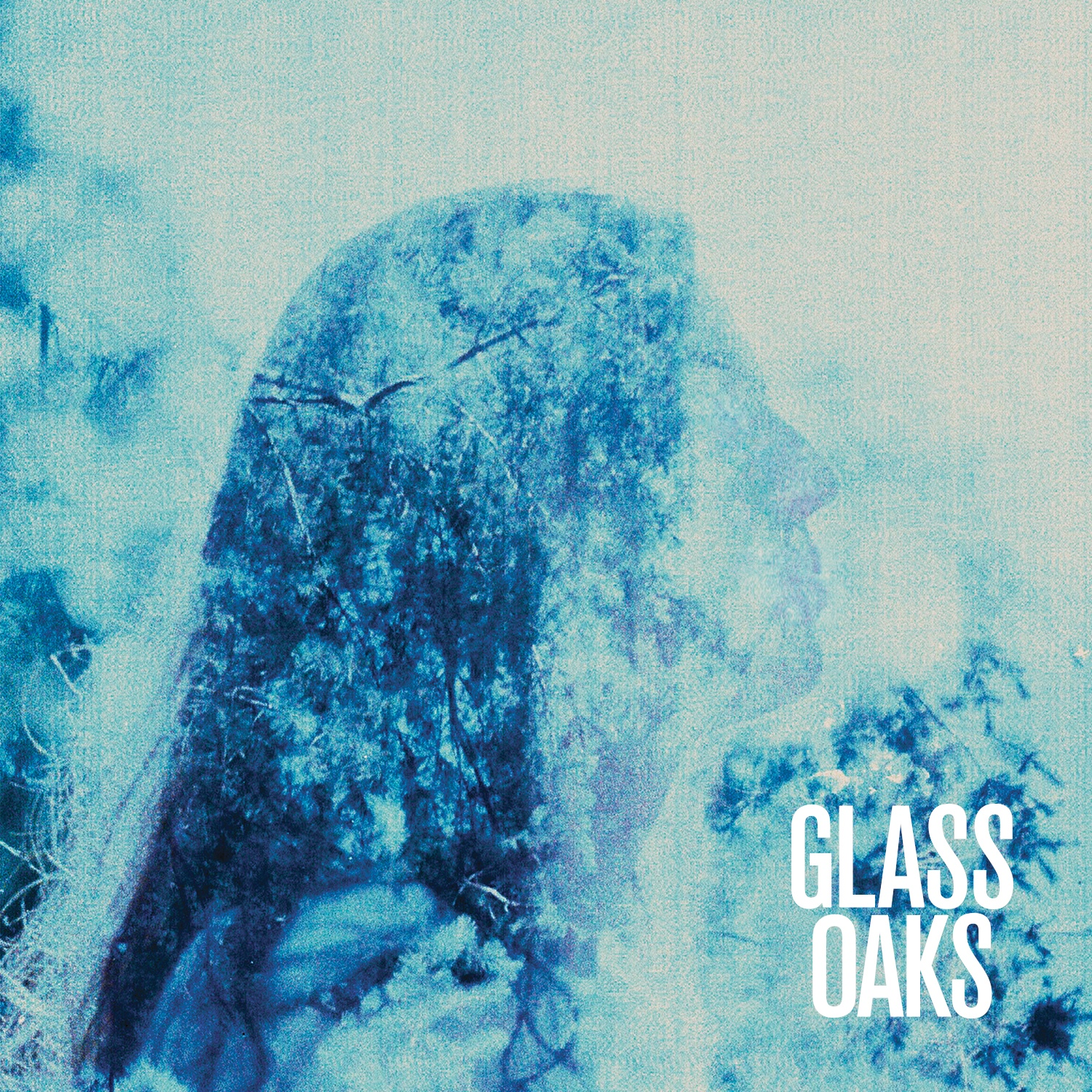 original-glassoaks_albumart.jpg