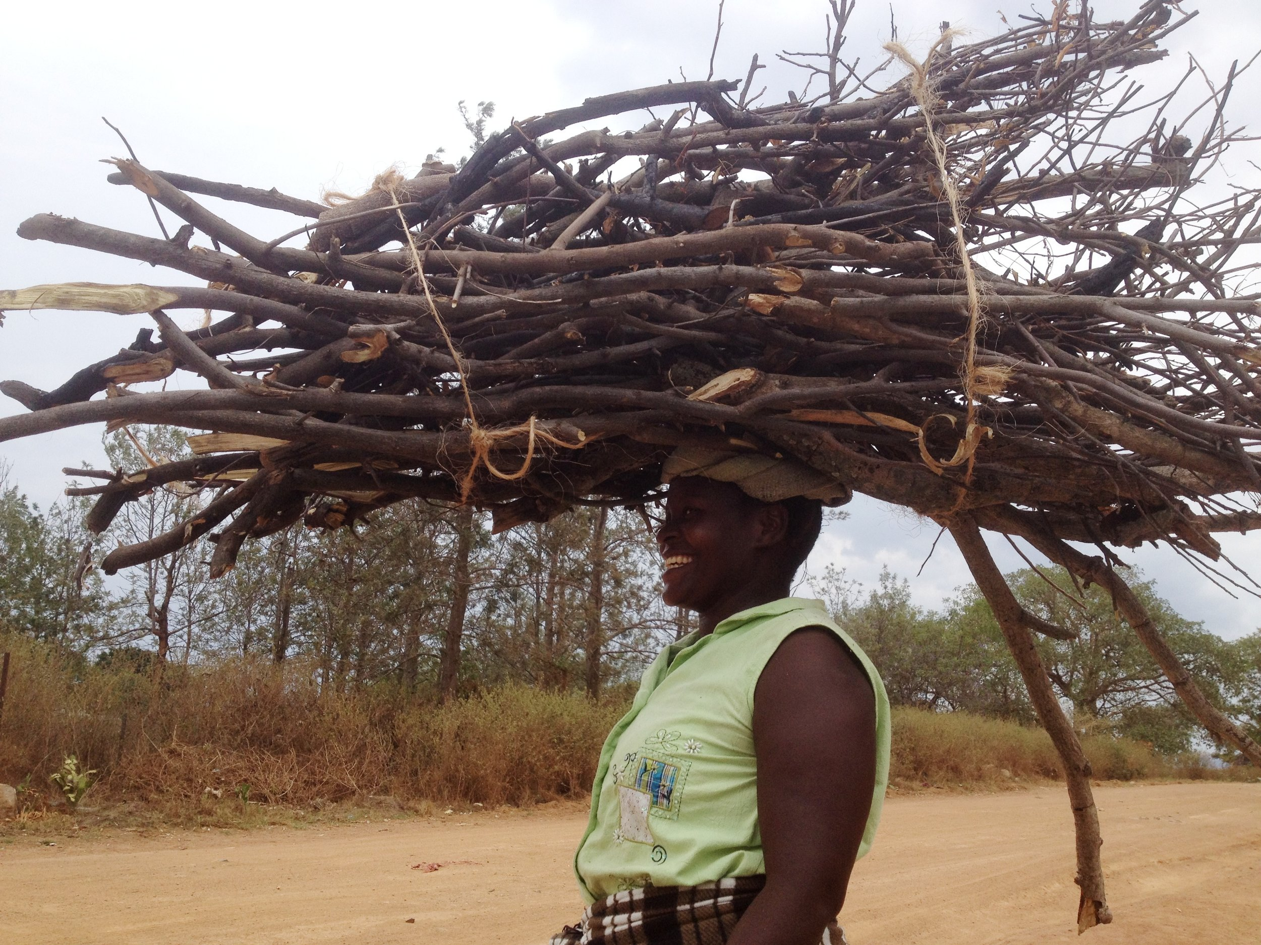 colour lady carrying wood.jpg