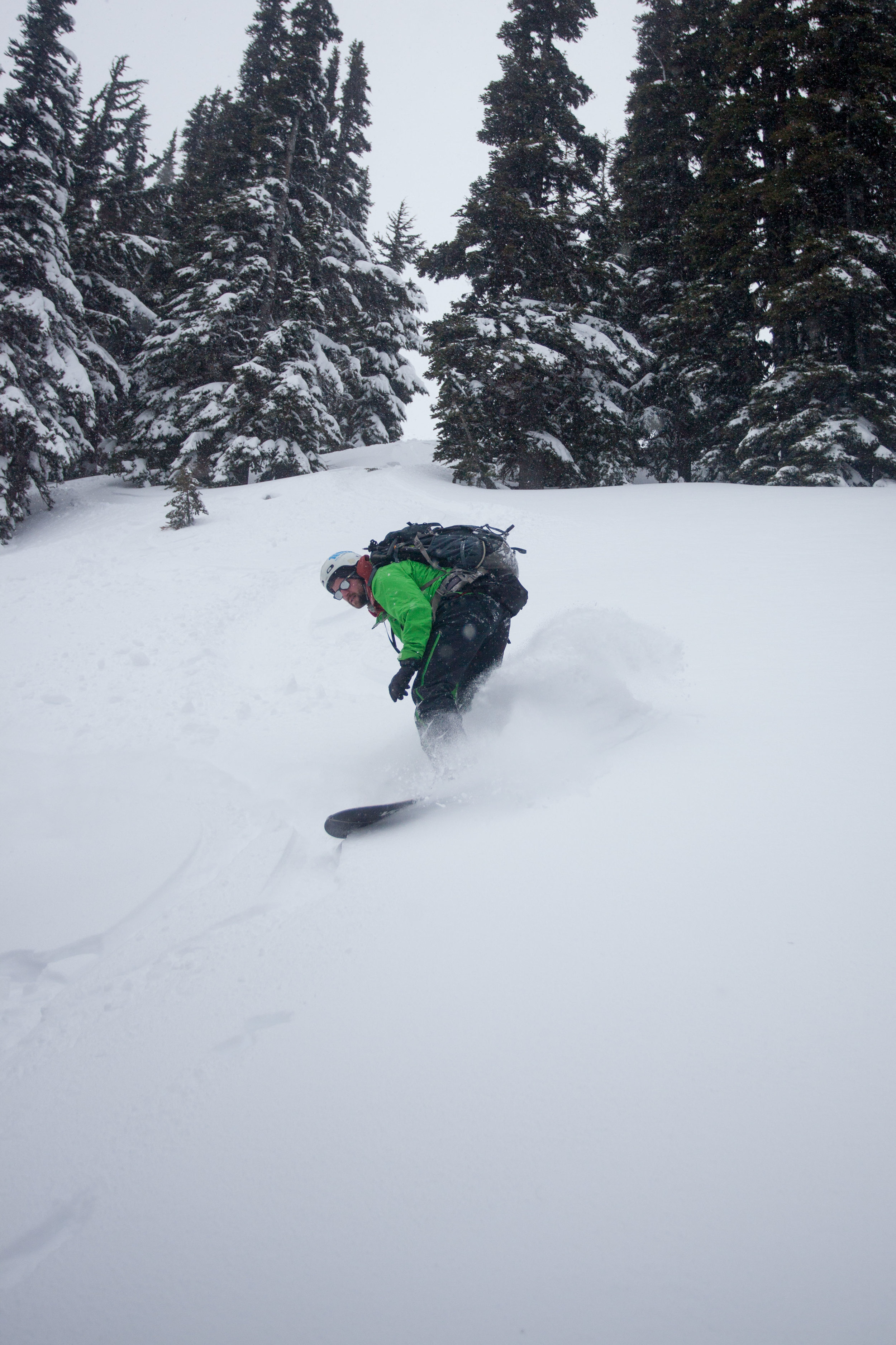 Toby shredding down the low angle trees off Joffre Arm (hut-side)