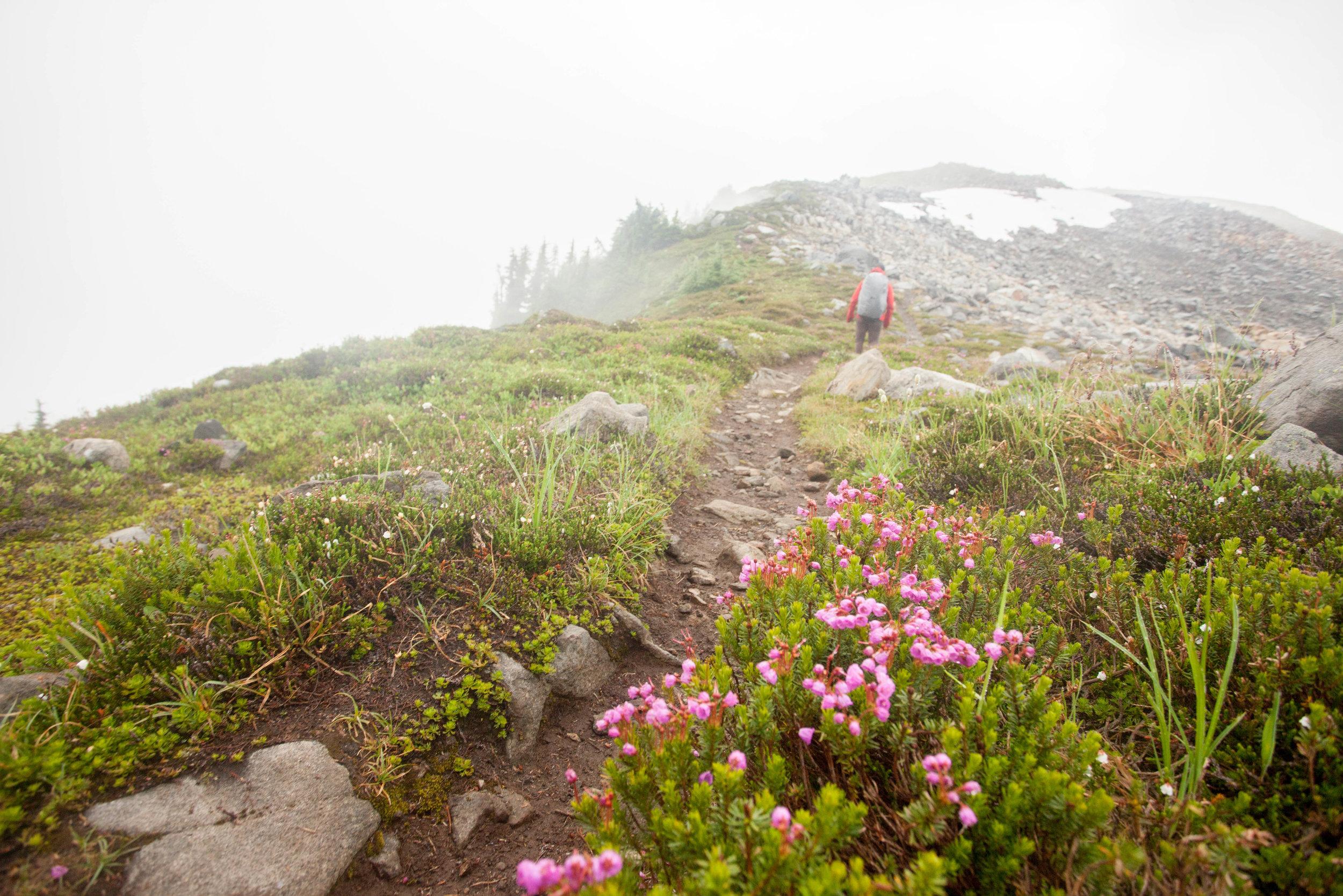 Hiking Copper Ridge in the clouds