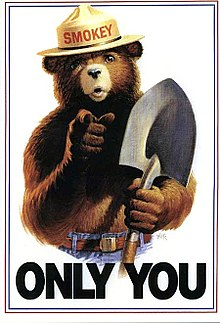 220px-Smokey_Bear_Only_You_campaign_hat.jpg