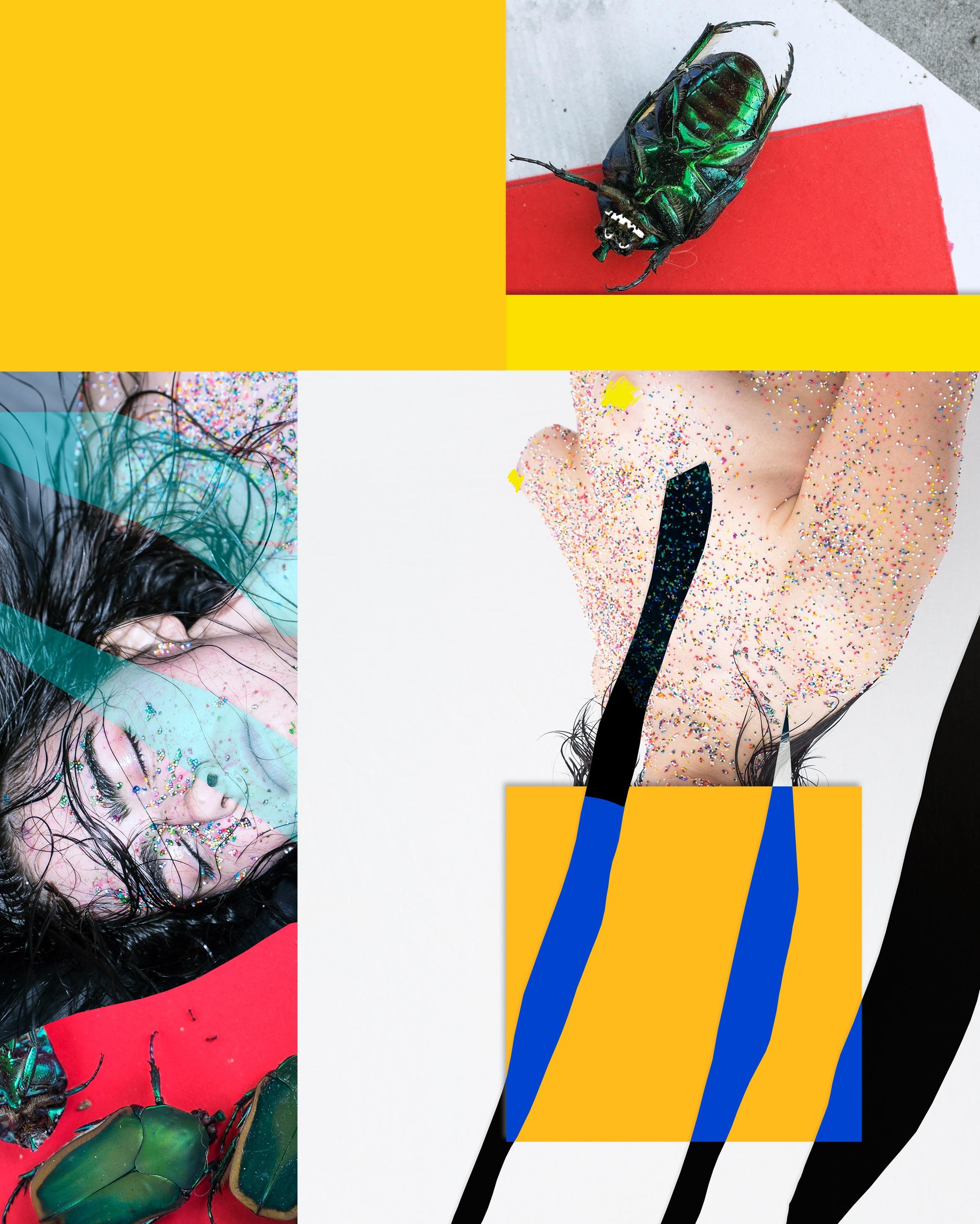 Icarus (Descent)  Archival pigment print  Ed. 1/1 + 2 AP  193 x 155 cm  2015
