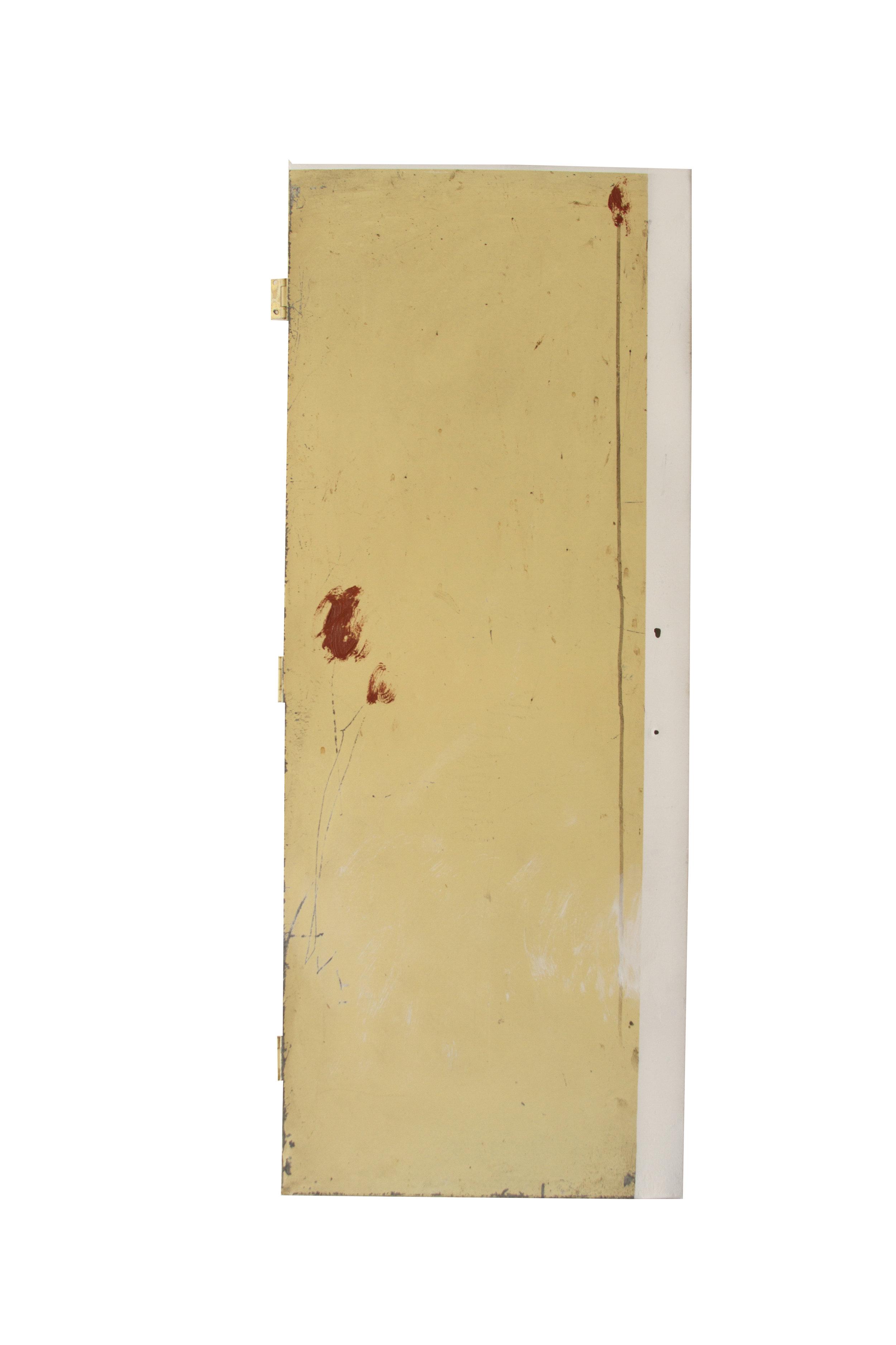 FLOWER1  Técnica:Grafito y aerosol sobre puerta metálica  Medida: 90 x 36 cm  Año: 2015