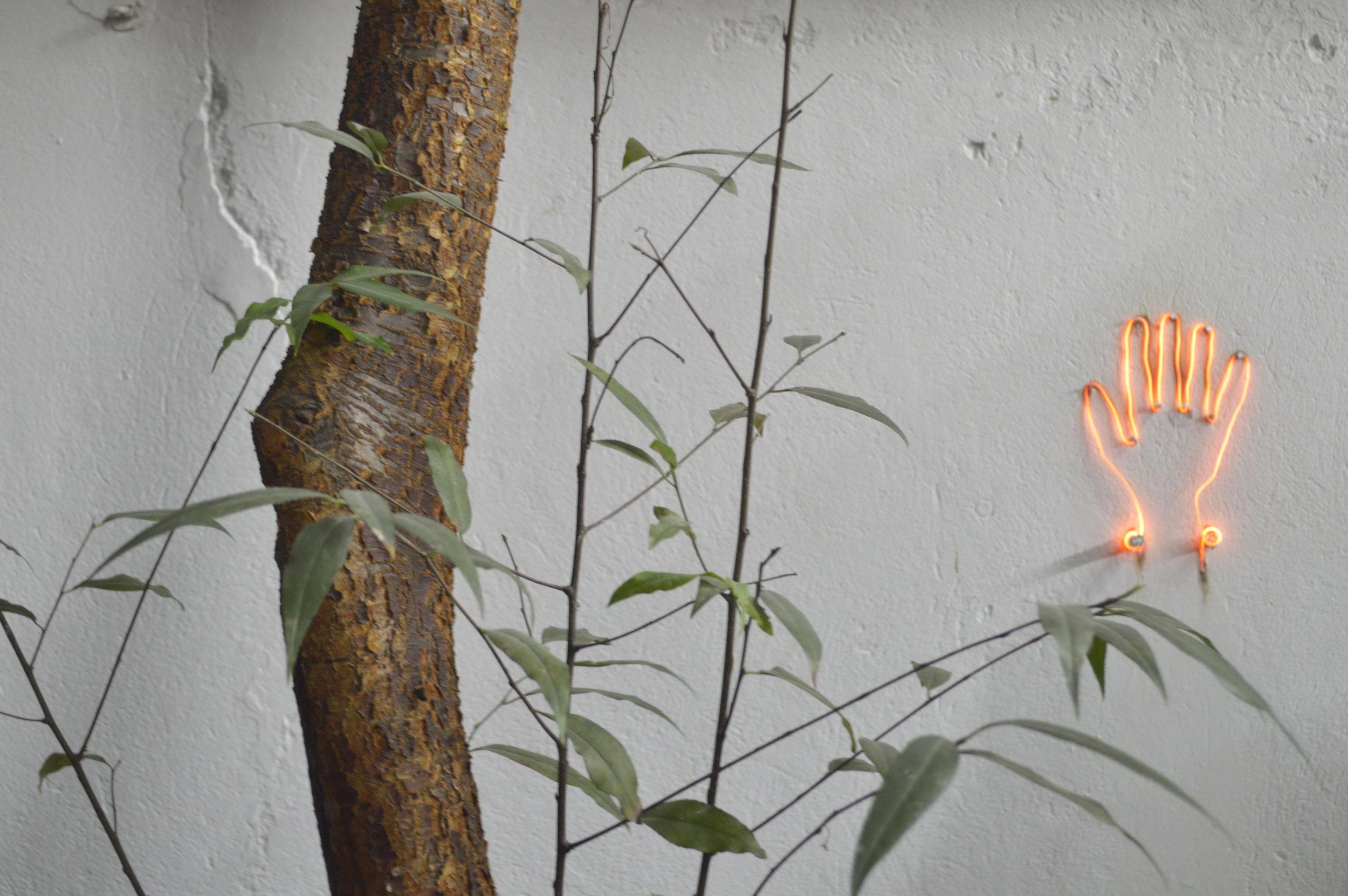 """CON LA PUNTA DEL DEDO, 2015  Exhibición individual, vista de jardín.  """"Sol Cegador""""   Dibujo sobre pared, resistencia y alambre de cantal   20 x 7,5 cm   2015"""