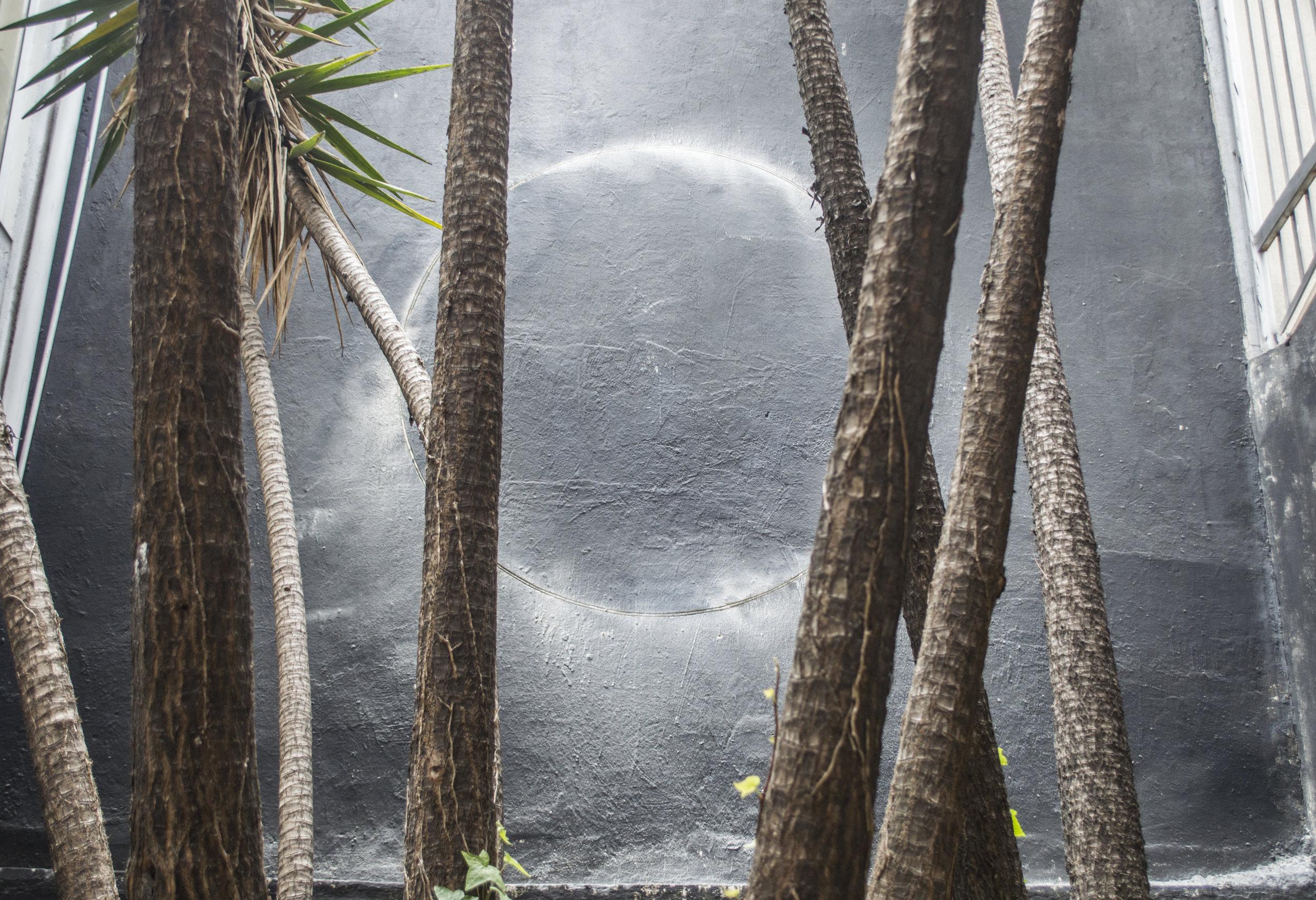 """CON LA PUNTA DEL DEDO, 2015  Exhibición individual, vista de jardín.  """"Con la punta del dedo""""   Bajo relieve sobre pared    Ø 200 cm   2015"""