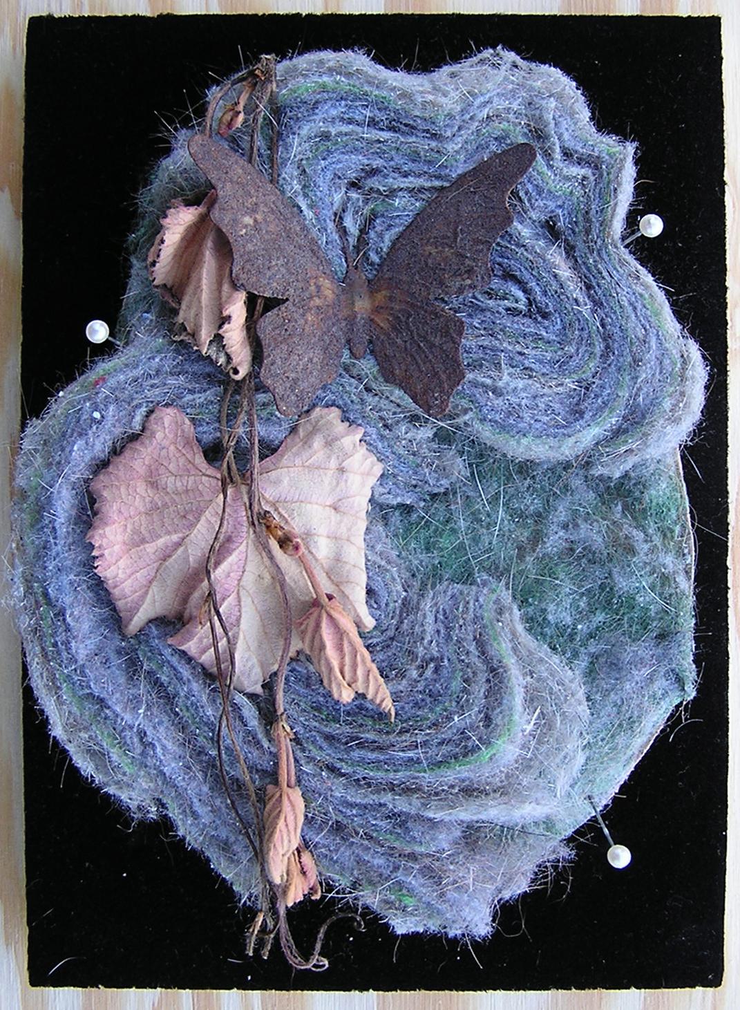 butterfly - 2009