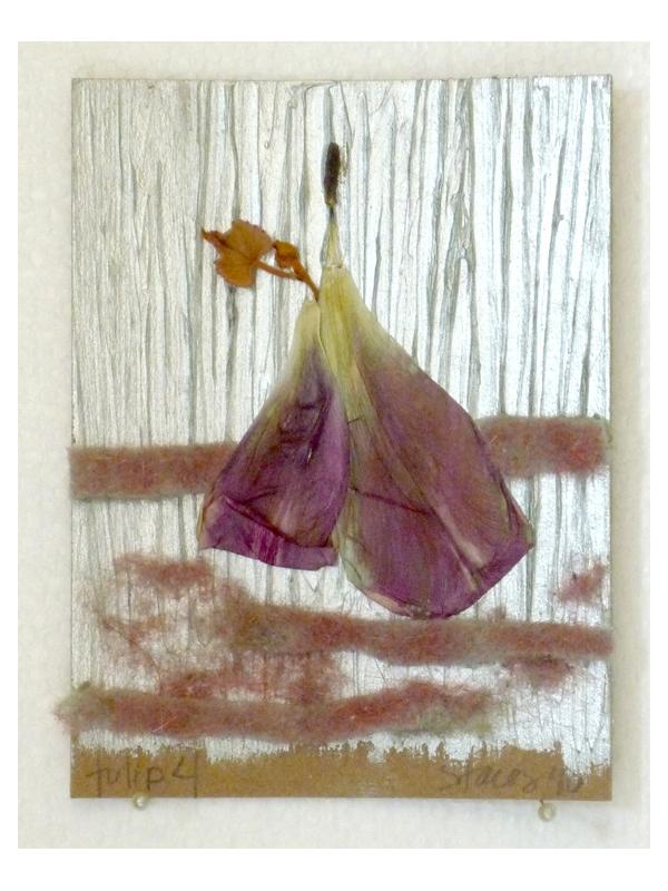 tulip 4 - 2010