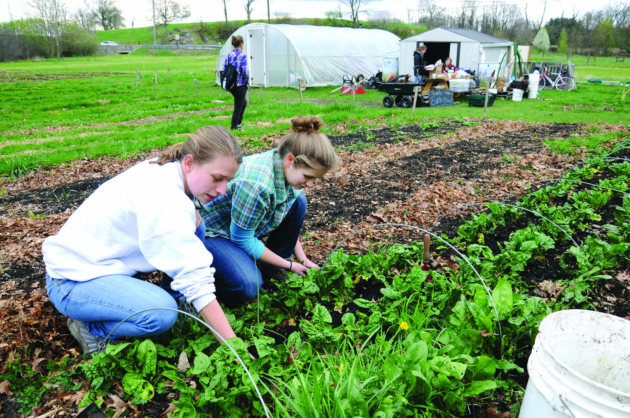 Members of the Shippensburg University Farm Club prepare the plot for spring planting. Part of their harvest is donated to Shippensburg Produce and Outreach.