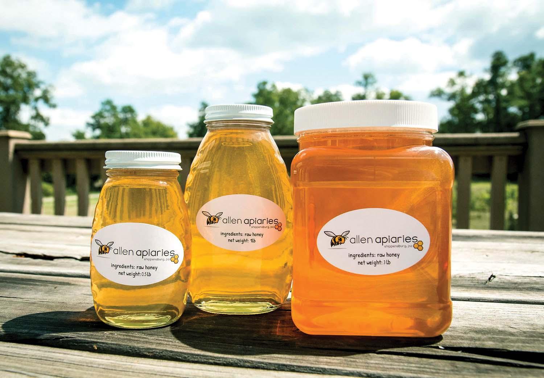 AllenApiaires.Bees.rgb.3.jpg