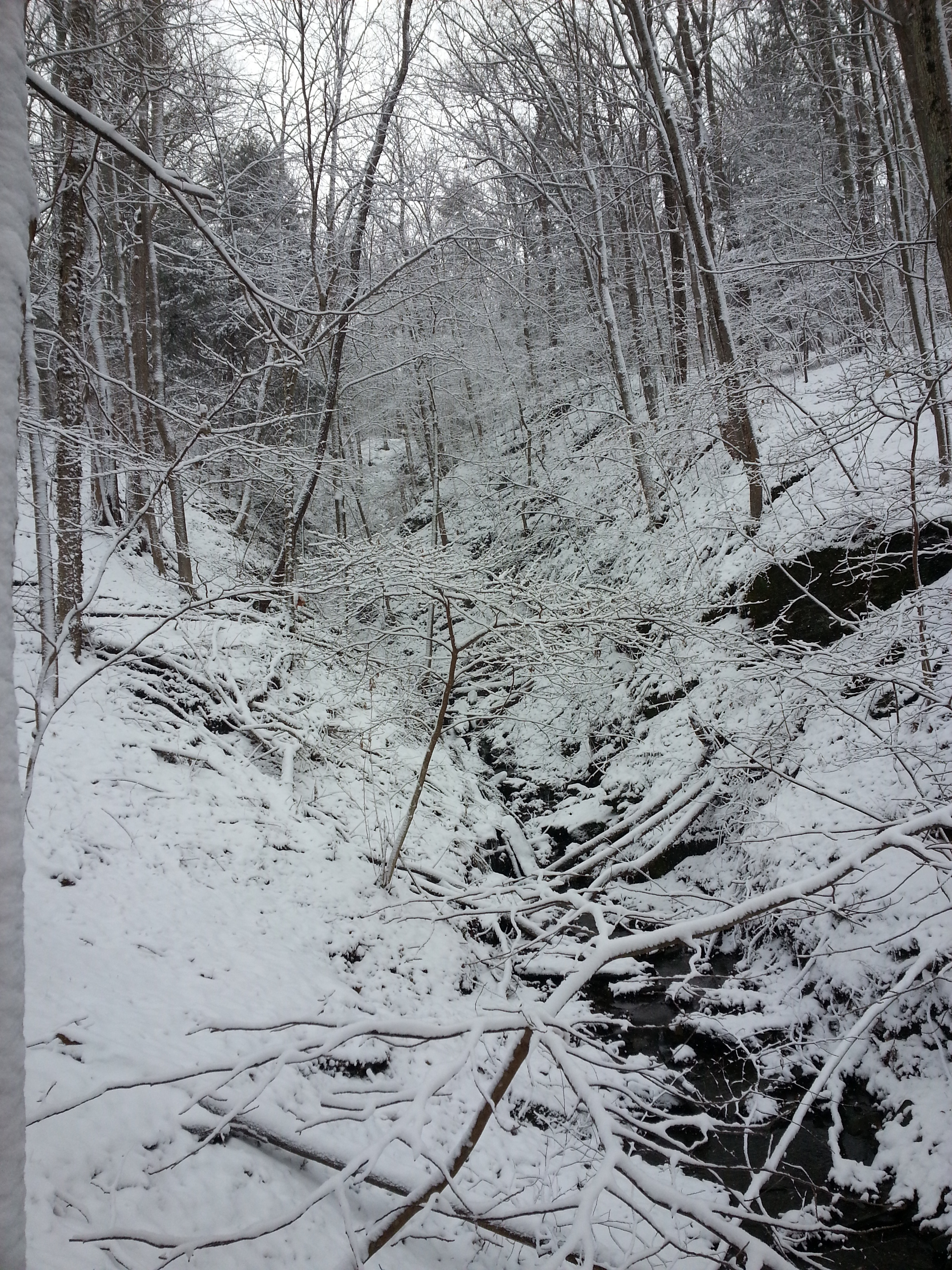 winter_ravine.jpg
